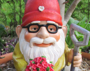 2. flower gnome close up face in potIMG_4027