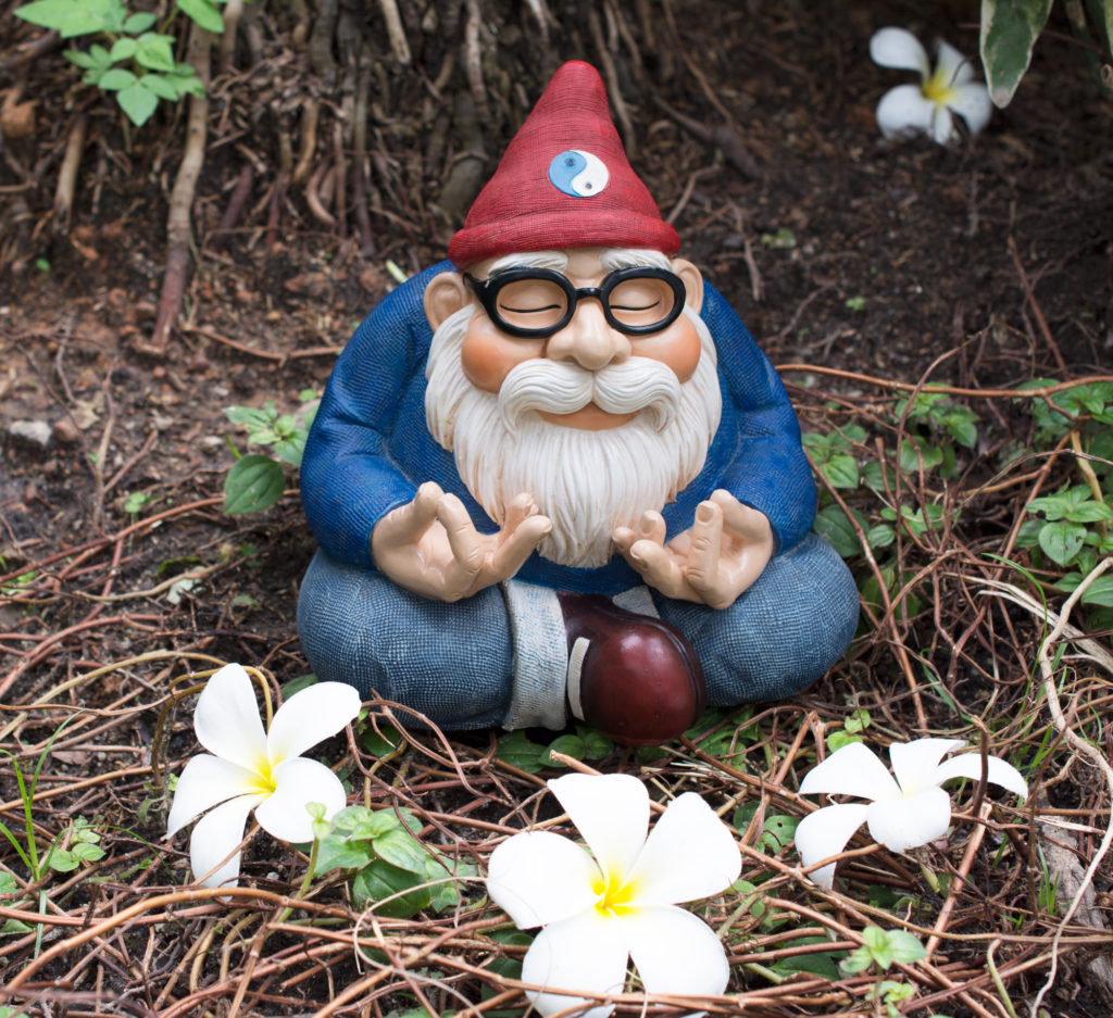 3. gnome-with-flowers-DSC_3459