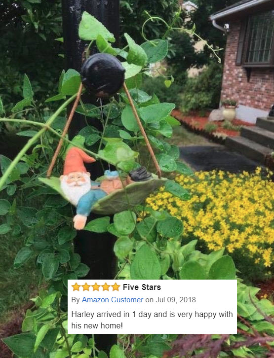 Harley the Hanging Leaf Gnome 7-9-18