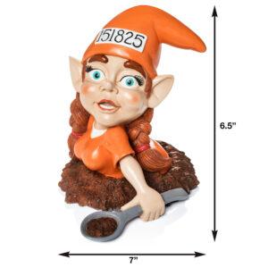 Jailbreak Gnome with Measurements
